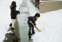 雪かきお手伝いの姪の子たちと息子の引越日 - 照片画廊