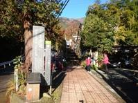 丹沢大山 - だだぽんのブログ ~ 旅と山と音楽と
