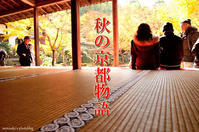 秋の京都物語 - モンスケ'ず ふぉとぶろぐ