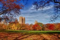 NY Life in Nov.(3) 2017★ サンクスギビングにバーバラと話したこと - 屋根裏部屋のドロシー*Dorothy in the Garret