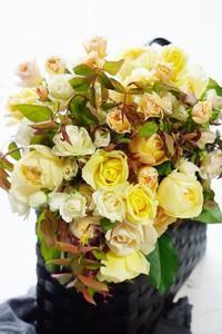 お初のクリーム・イエロー系和ばらのブーケ&コンポジション - お花に囲まれて