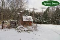 初冬のお散歩で、番所大滝へ~~。 - 乗鞍高原カフェ&バー スプリングバンクの日記②