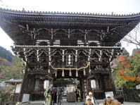 京都西山 善峯寺(よしみねでら)へ紅葉狩り - 健康で輝いて楽しくⅡ