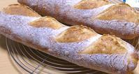 パンを焼いたり料理をしたり - ~あこパン日記~さあパンを焼きましょう