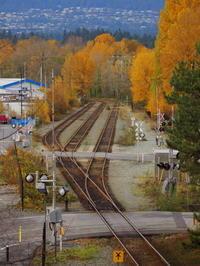 秋の線路 - 花散歩写真 in Vancouver