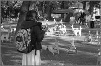 上野公園 - n e c o f l e x