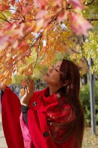 大阪城公園、紅葉 - この青い空を君にあげる