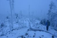 霧の頂上八経ヶ岳 - 峰さんの山あるき