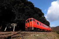 小さな鳥居とタラキハ。 - 山陽路を往く列車たち