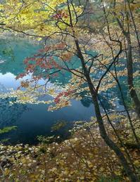 秋の五色沼 - 写真巡礼「日本の風景」