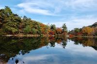 再度公園の、紅葉 - カンパーニュママの日々の出来事日記