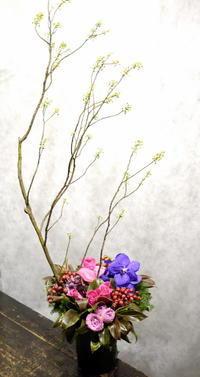 南5西3のビル2階にOPENのジンギスカンと割烹のお店に。「和を意識して」。2017/11/21。 - 札幌 花屋 meLL flowers