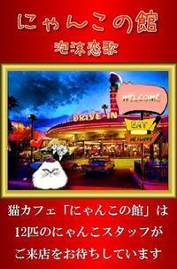 猫カフェ『にゃんこの館』29 - ― Metamorphose ―