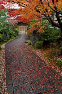 京都の紅葉2017 洛西・正法寺にて - 花景色-K.W.C. PhotoBlog