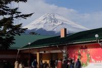 富士サファリパーク1 - 動物園に嵌り中
