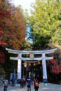 宝登山神社 - くろちゃんの写真