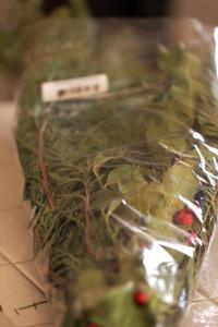 トレジョーのクリスマスグリーンでガーランド - クローバーのLife is cozy