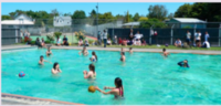 William Colenso College の年末のイベント紹介です♪ - ニュージーランド留学とワーホリな情報