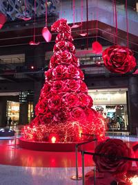 バラののクリスマスツリー - ★ Eau Claire ★ Dolce Vita ★