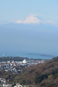 葉山に肥料を買いに富士山も見えて - 光さんの日常