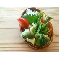 鶏胸肉の香味和えBENTO - Feeling Cuisine.com