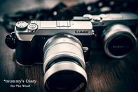 お供カメラに新しい子が登場! - ON THE WIND  *mummy's Diary