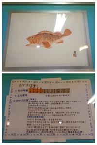 魚拓ー第4弾ー - 埼玉県魚市場「市場あれこれ」
