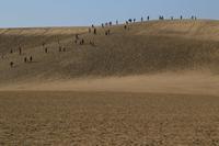 鳥取砂丘 - 写真を主とした日記です