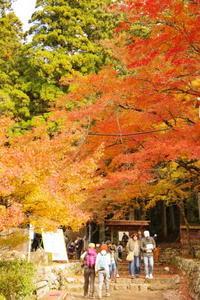紅葉狩りを兼ねて、鳳来寺山に登山に行ってきた。 - なごやかなごやレコンキスタ!
