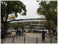 久しぶりの関東、7泊8日の千葉・東京・横浜・ぶらりきまま旅②横浜へ - さくらおばちゃんの趣味悠遊