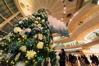クリスマスモード - View Finder - レンズの向こう側
