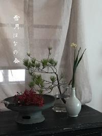 雪月 : はなの会  (迎年の花したく) - つきくさ帖   草花とおして、毎日とくべつ