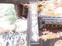 光明寺の紅葉 - これから見る景色