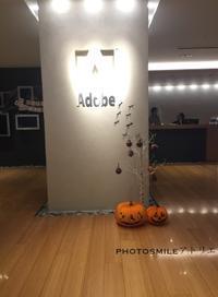 Adobe Lightroom が新しくなりました◆ - PHOTOSMILE アトリエ
