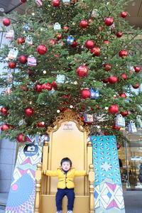 クリスマスツリー - London tea
