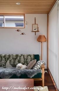 【インテリア】高塚さんの木工品色々まさかの奇跡の在庫あり!?どこの?とよく聞かれる飾り棚と楽しみ方 - 10年後も好きな家