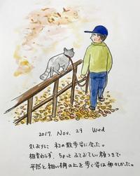 ネコ散歩 - 一天一画   Yuki Goto