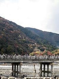 藤田八束の鉄道写真@平成29年11月の写真を整理しました・・・思い出を写真は再現、カシオとキャノンのカメラに感謝 - 藤田八束の日記
