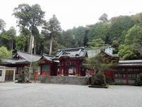 初詣は箱根神社へ - 白壁荘だより  天城百話