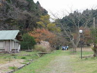 12月になりました / 都会から自然体験の小学生 - 千葉県いすみ環境と文化のさとセンター