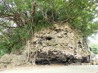石垣島にて(8) - 飛騨山脈の自然