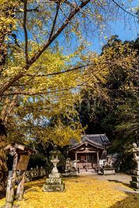 ここも散っていました素盞雄神社 - toshi の ならはまほろば
