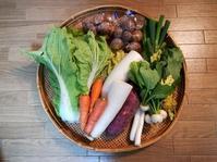 古来種の野菜をいただきました。/お重箱買いました。 - 暮らしのつづりかた。