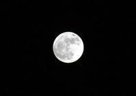 【散撮】お月様 - 人生を楽しくイきましょう!