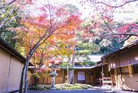 一条恵観山荘〜神奈川県鎌倉市〜 - Photographie de la couleur