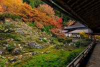 京都の紅葉2017 常照皇寺・山寺の秋 - 花景色-K.W.C. PhotoBlog