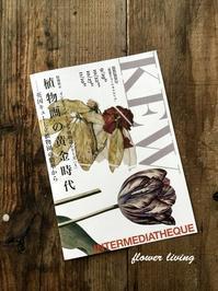 明日まで!『植物画の黄金時代――英国キュー王立植物園の精華から』と『フローラ ヤポニカ—日本人画家が描いた日本の植物—』 - flower living