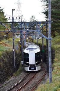 SL大樹 - new 汽車の風景