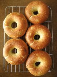 玄麦入りキタノカオリのベーグル - slow life,bread life