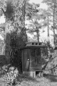 どこか人懐っこい高原の木箱 - Film&Gasoline